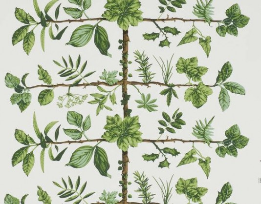 wallpaper-pierrefrey
